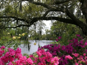 Airlie Gardens Vacation Planning Guide